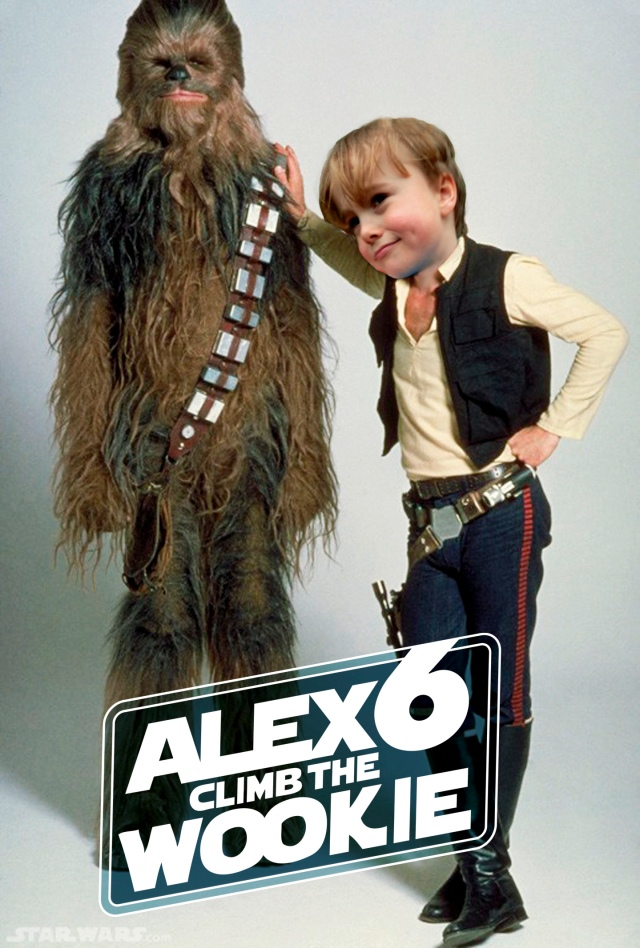Alex6–Climb the Wookie