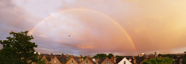 Rainbow 1 sm