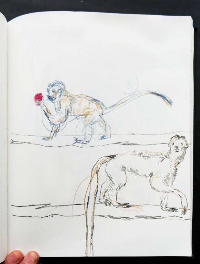 london-zoo-two-little-monkeys