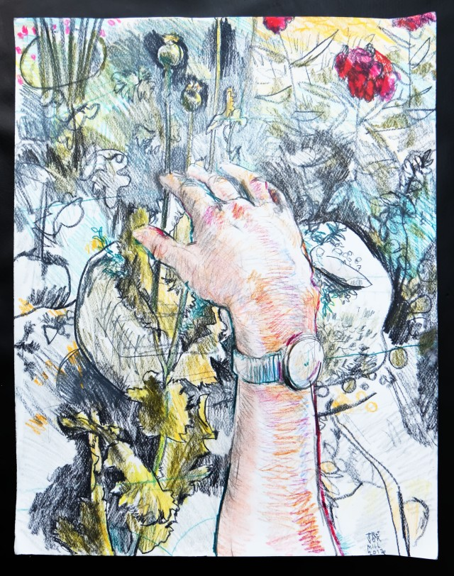VC garden with my hand 01072017