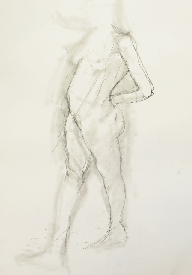 David best drawing