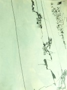 Climbing in Padley Gorge MONO 2 230718